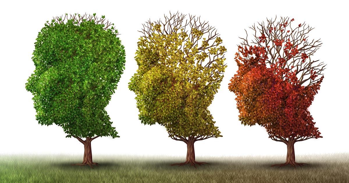 Imagery for Dementia - Senior Living in Loveland, CO